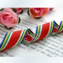 Pattern ribbon, Assorted colours, 2.5cm x 2m, 1 piece, (SD132)